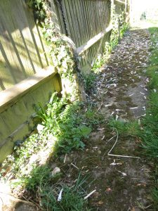 before unkempt rented property garden revived by the landgirl